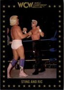 1991 WCW Collectible Trading Cards (Championship Marketing) Sting and Ric 52