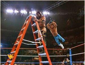 Laddermatch.jpg