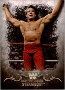 2016 Topps WWE Undisputed Wrestling Cards Ricky Steamboat 82