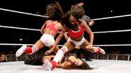 WrestleMania Revenge Tour 2013 - Dublin.13