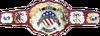 IWGP United States Championship Belt.png