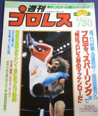 Weekly Pro Wrestling No. 90