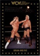 1991 WCW Collectible Trading Cards (Championship Marketing) Brian and Ric 61