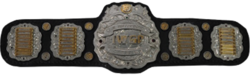 IWGP Junior Heavyweight Championship Belt.png