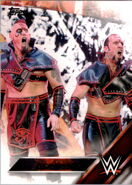 2016 WWE (Topps) The Ascension 4