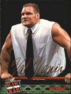 2001 WWF RAW Is War (Fleer) Val Venis 21