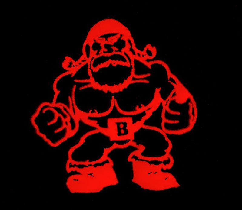 Bruiser Wrestling Federation