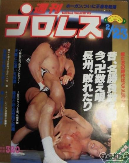 Weekly Pro Wrestling No. 244