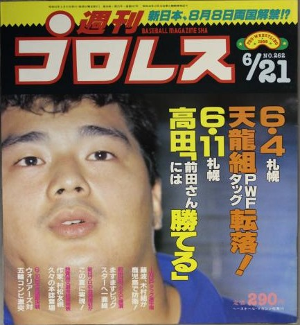 Weekly Pro Wrestling No. 262