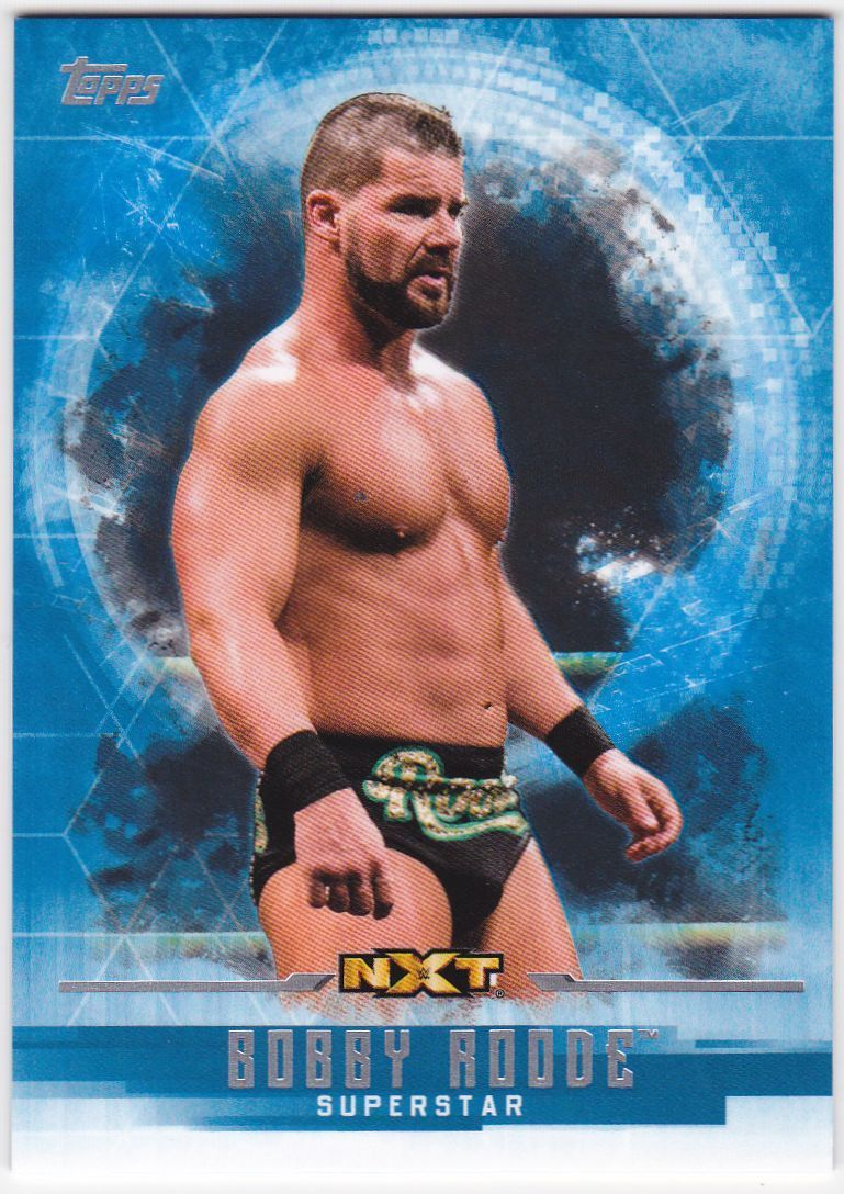 2017 WWE Undisputed Wrestling Cards (Topps) Bobby Roode (No.44)