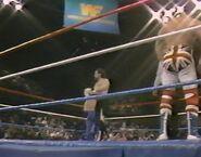 1.16.88 WWF Superstars.00014