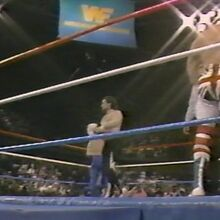 1.16.88 WWF Superstars.00014.jpg