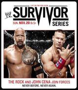 Survivor Series 2011 poster