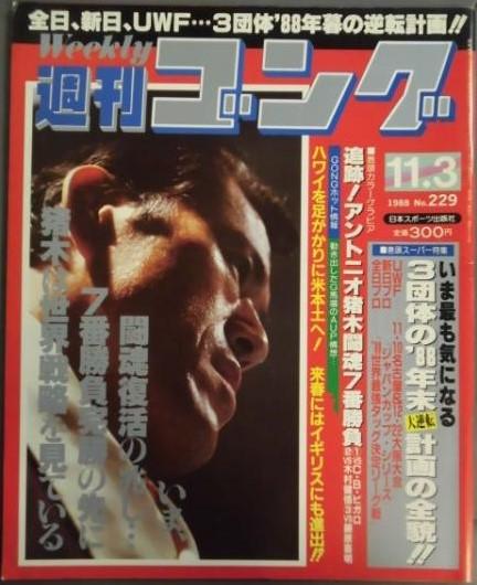 Weekly Gong No. 229