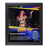 Sasha Banks FastLane 2017 15 x 17 Framed Plaque w Ring Canvas