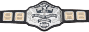 WWF 85 Championship