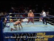February 13, 1993 WCW Saturday Night 5