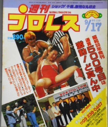 Weekly Pro Wrestling No. 110