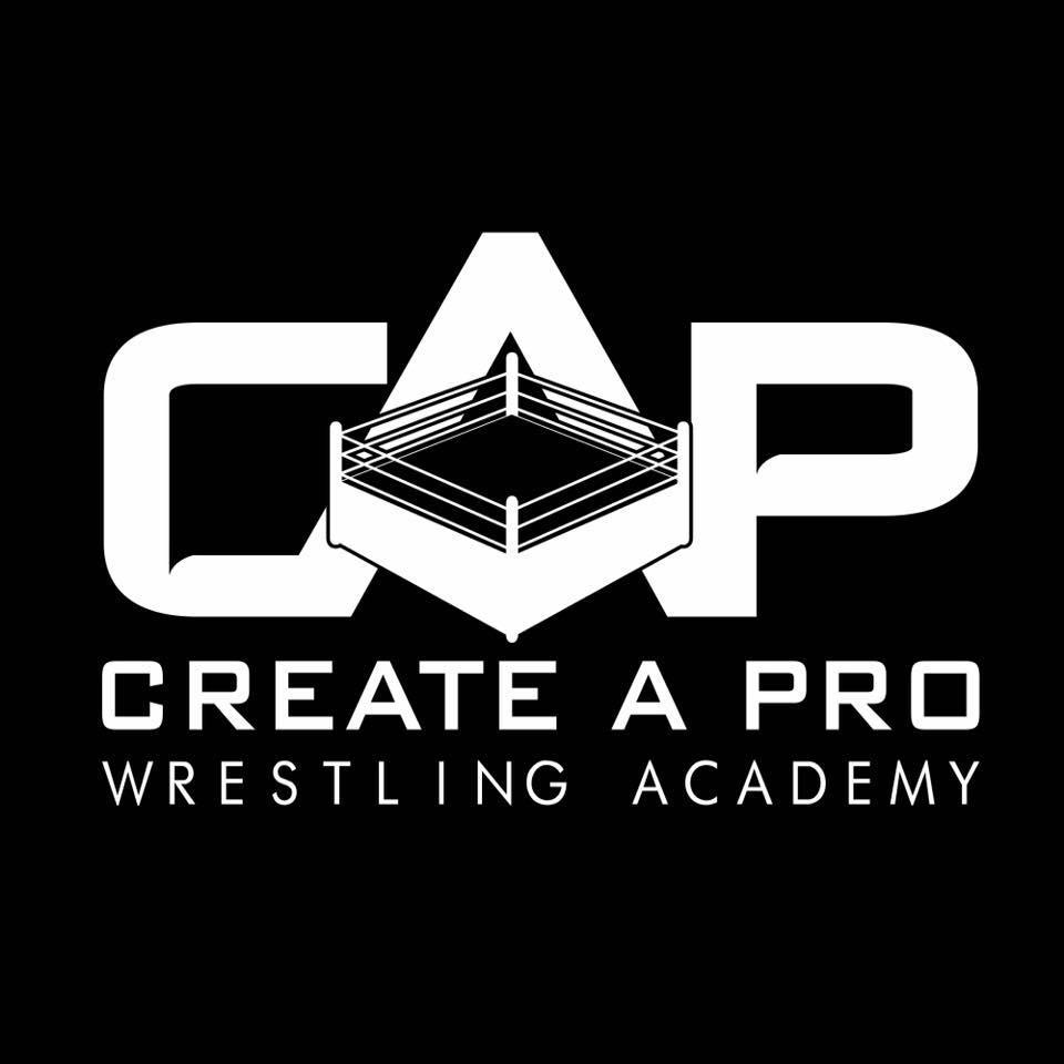 Create A Pro Wrestling Academy