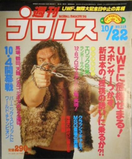 Weekly Pro Wrestling No. 115