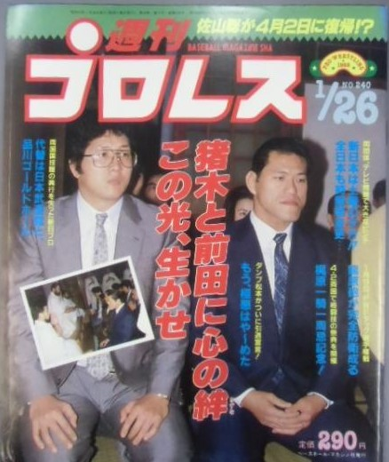 Weekly Pro Wrestling No. 240