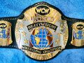 WCW World Champion 4
