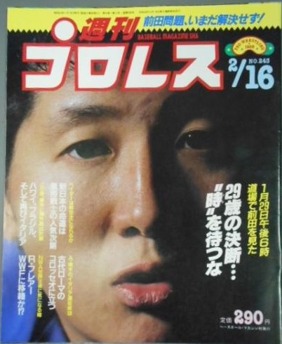 Weekly Pro Wrestling No. 243