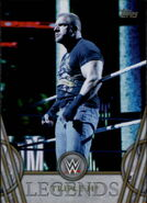 2018 Legends of WWE (Topps) Triple H 70