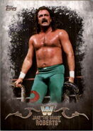 2016 Topps WWE Undisputed Wrestling Cards Jake Roberts 62