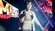 WrestleMania Revenge Tour 2013 - Dublin.7