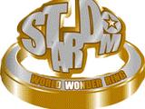 Stardom Cinderella Tournament 2019