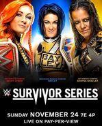 Survivor Series 2019 poster