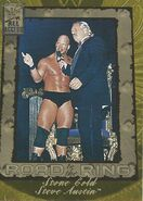 2002 WWF All Access (Fleer) Stone Cold Steve Austin 85