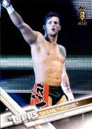 2017 WWE Wrestling Cards (Topps) Shane Thorne 85
