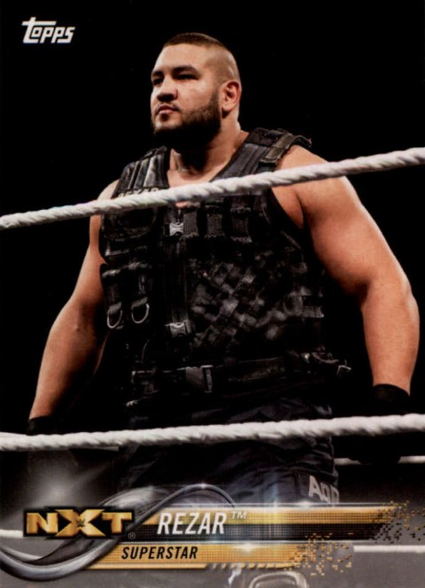 2018 WWE Wrestling Cards (Topps) Rezar (No.76)