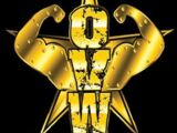 April 20, 2013 Ohio Valley Wrestling results