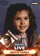 2013 TNA Impact Wrestling Live Trading Cards (Tristar) Mickie James 94