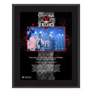 Finn Bálor NXT TakeOver Vengeance Day 10x13 Commemorative Plaque