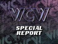 January 2, 1993 WCW Saturday Night 1