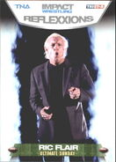 2012 TNA Impact Wrestling Reflexxions Trading Cards (Tristar) Ric Flair 62