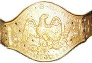 NWF World Heavyweight Championship
