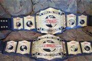 180px-TNA Tag Team Championships