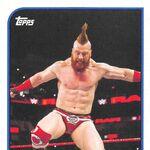 2018 WWE Heritage Wrestling Cards (Topps) Sheamus 72.jpg