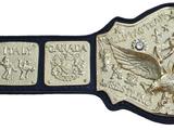 NWA World Tag Team Championship
