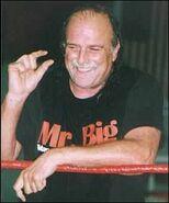 Roberts2007