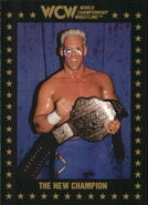 1991 WCW Collectible Trading Cards (Championship Marketing) Sting 82
