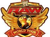 WWE WrestleMania Revenge Tour 2013 - Dublin