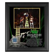 Nikki A.S.H. Money In The Bank 15x17 Commemorative Plaque