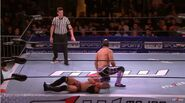 MLW Fusion 61 8