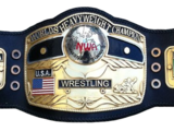 NWA World Heavyweight Championship